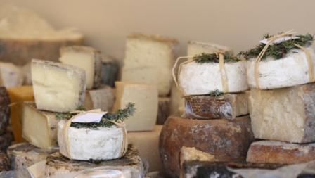 istock_000005083904xsmall1-cheese.jpg