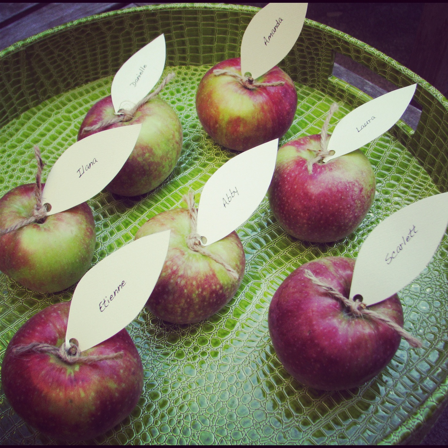 Diy apple place cards fall party ideas stylish spoon for Apples for decoration