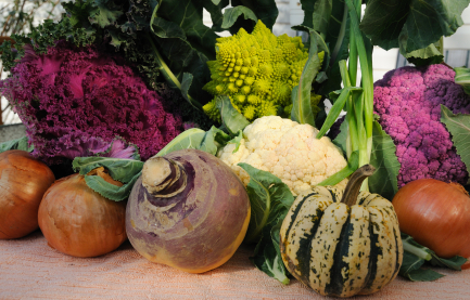 fall vegetable side dishes thanksgiving recipes